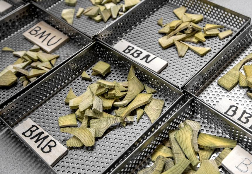 Prøvetaking før kjemisk analyse av inntrengningen av trebeskyttelsesmiddelet. Foto: Anna Sigge